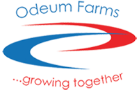 Odeum Farms